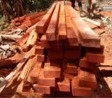 Tropical Wood  Sawn Timber - Lumber - Planed Timber - Quality Padouk round logs and sawn woods