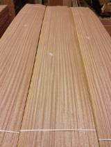 Sliced Veneer - Sapelli (Sapele, Aboudikro, Penkwa, Lifaki), Flat cut, plain, Natural Veneer