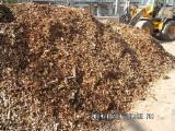 All Species Firewood, Pellets And Residues - All Species Used Wood 10 m