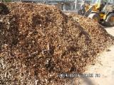 Lemn De Foc, Brichete/peleţi, Deşeuri Lemnoase Cereri - Cumparam deseuri de lemn