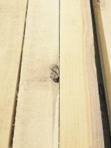 Hardwood - Square-Edged Sawn Timber - Lumber Supplies Frame grade Birch lumber, S4S, KD