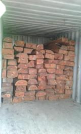 Tropical Wood  Logs For Sale - HARDWOOD TIMBER FROM TANZANIA
