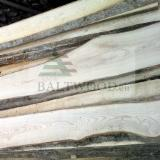 Hardwood  Unedged Timber - Flitches - Boules - Unedged Fresh Ash Lumber, ABC Grade, 27-28 mm thick