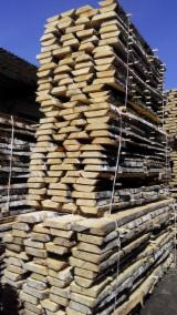 Laubholz  Blockware, Unbesäumtes Holz Zu Verkaufen Russland - Loseware, Birke
