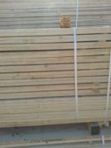 24; 48; 100 mm Fresh Sawn Spruce (Picea Abies) - Whitewood from Romania, Alba