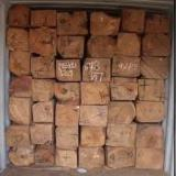 Tropical Wood  Logs - Need to Import Kosso wood