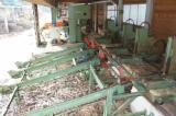 Woodworking Machinery Log Band Saw Vertical - PRIMULTINI SGD 1300 Log band saw