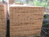 Sawn Timber - One way pallet elements