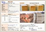 Nadelschnittholz, Besäumtes Holz Korea-Kiefer Pinus Koraiensis Zu Verkaufen - Kanthölzer, Fichte/Tanne/Kiefer
