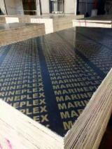 Plywood For Sale - Film Faced Plywood, Brown Film, Finger Joint Core, WBP Glue