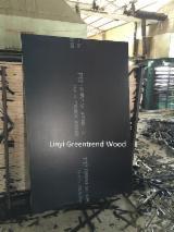 Pronađite najbolje drvne zalihe na Fordaq - Laminirana Šperploča (Crni Sloj)