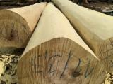 Hardwood  Logs For Sale - Handmade rounded acacia wood on request