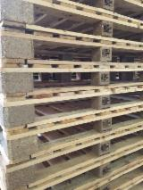 Recycled - Used In Good State  Pallet in Italy