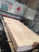Plywood - 2.5mm 4.8mm 18mm CAOBILLA PLYWOOD