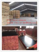 Plywood - 1200x2400mm Black film faced shuttering plywood for concrete formwork