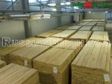 Hardwood - Square-Edged Sawn Timber - Lumber Supplies - Russian Birch 3A Common