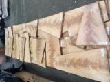 Messerfurnier Zu Verkaufen Großbritannien - Naturfurnier, Cerejeira, Blumenfurnier (Splint, Pyramide)