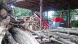 Wholesale Biomass Pellets, Firewood, Smoking Chips And Wood Off Cuts - Firewood - Oak, Hornbeam, Ash, Alder, Birch, Aspen
