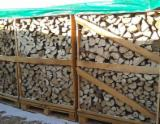 Firewood - Chips - Pellets  - Fordaq Online market - Firewood - Oak, Hornbeam, Ash, Alder, Birch, Aspen