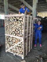 Firewood - Chips - Pellets  - Fordaq Online market - Kiln dried Firewood - Beech, 1 CM / 1,7 CM / 2 CM