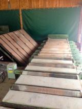 Maszyny do Obróbki Drewna dostawa - SAEGEWERKS MECHANISIERUNG Używane Austria