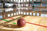 Solid Wood Flooring - Sports parquet flooring. Maple