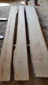 Hardwood - Square-Edged Sawn Timber - Lumber  - Fordaq Online market - Stave woods , Beech (Europe)