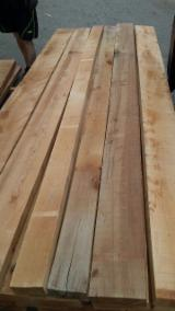 Find best timber supplies on Fordaq - European Beech Square Edged KD