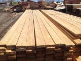 Offers - Siberian LARCH high quality