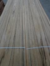 刨切单板  - Fordaq 在线 市場 - 天然木皮单板, 平切,华纹