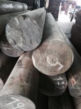 Tropical Wood  Logs - Palo Santo Verawood, Argentine Lignum Vitae Cylinders