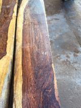 Tropical Wood  Logs - SQUARE LOGS HONDURAS ROSEWOOD