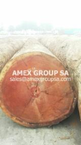 Tropical Wood  Logs For Sale - Doussie logs (pachyloba)