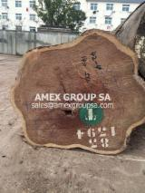 Tropical Wood  Logs For Sale - Pao Rosa logs