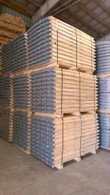 Lithuania Pallets And Packaging - New Pallet Collars in Lithuania