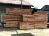 Sawn and Structural Timber - Merpauh Sawn Timber