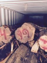 Softwood  Logs - Cylindrical trimmed round wood, Cypress