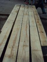 Beech (europe) Planks (boards)  in Poland