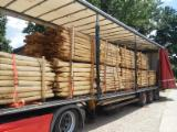 Hardwood  Unedged Timber - Flitches - Boules - Acacia Loose in Serbia