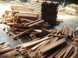 Tropical Wood  Logs - Sell Rubberwood