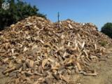 Beech (Europe) in France Firewood/Woodlogs Cleaved 20 cm