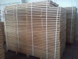 Hardwood - Square-Edged Sawn Timber - Lumber Supplies - Oak Sawn Lumber | Timber of Hardwood (Oak) | Kiln Dried (KD 6-8%)