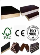 Plywood  Supplies China - Film Faced plywood/Shuttering Plywood/Marine Plywood