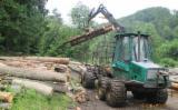 Slovakia Forest & Harvesting Equipment - Used Timberjack 2000 Forwarder in Slovakia