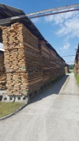 Unedged Hardwood Timber - Beech (Europe), Boules