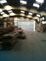 Forestry Companies For Sale - Sawmill