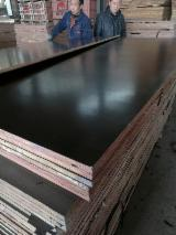 Plywood Poplar For Sale - Top Quality Film Faced Plywood for Concrete