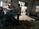 Fordaq wood market - 8 ft(2600mm) log debarker