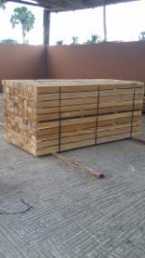 Tropical Wood  Sawn Timber - Lumber - Planed Timber - Tectona Grandis (African Teak)
