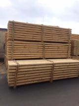 Softwood  Logs - Pine poles for sale